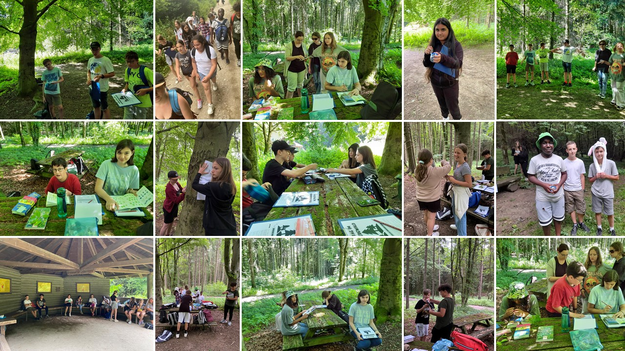 Motto: Wald & Kreativität